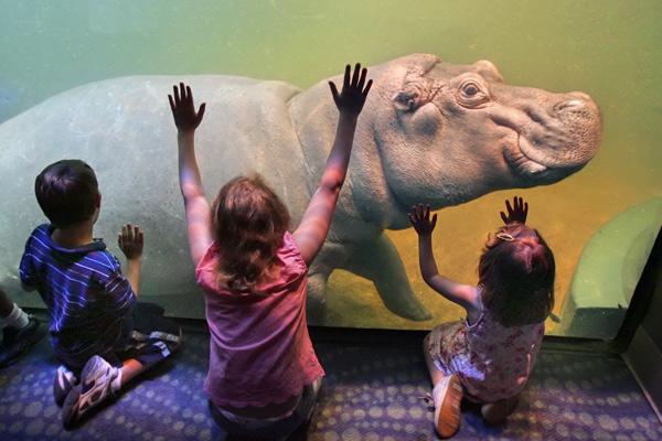 Adventure Aquarium Visit Philadelphia